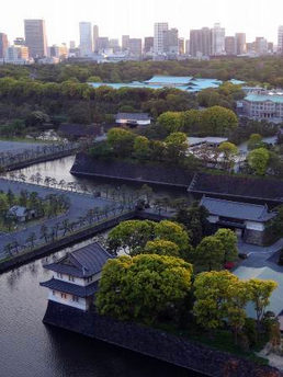 View from The Palace Hotel Tokyo which was the venue for the two-day Forum.